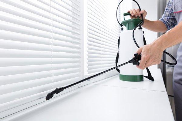 pest spraying inside home